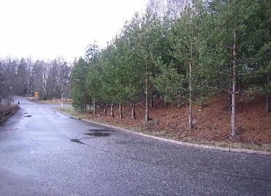 Varia Koivukylä